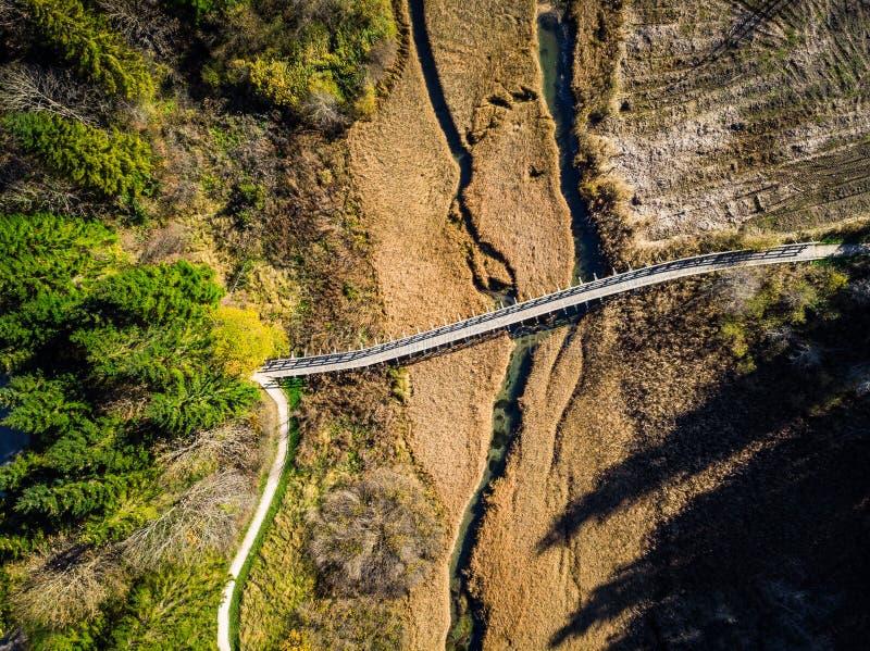 Деревянный footbridge на заповеднике Zelenci, Словении стоковая фотография