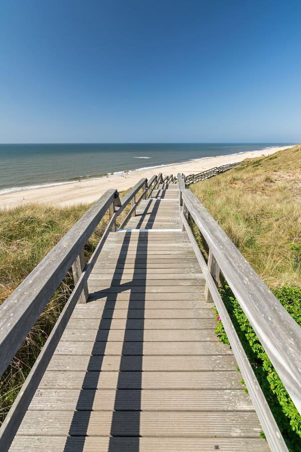 Деревянный footbridge через дюны рядом со сценарным пляжем стоковое фото