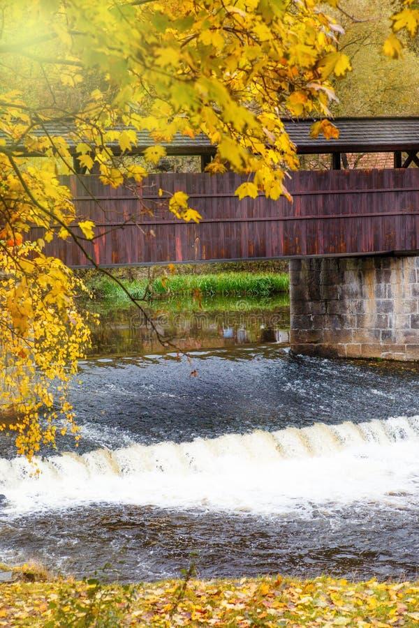 Деревянный footbridge стоковые фото