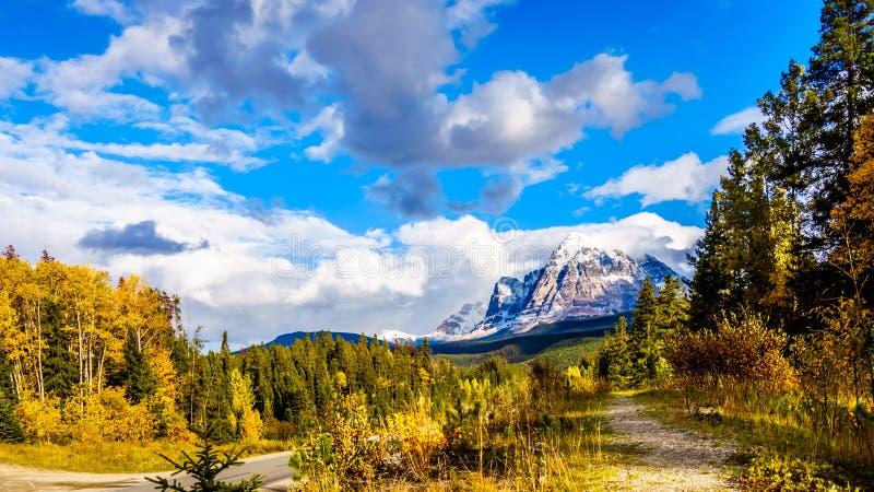 Держатель Fitzwilliam, восток на шоссе Yellowhead, часть канадских скалистых гор Низкая - половина доломит стоковые изображения rf