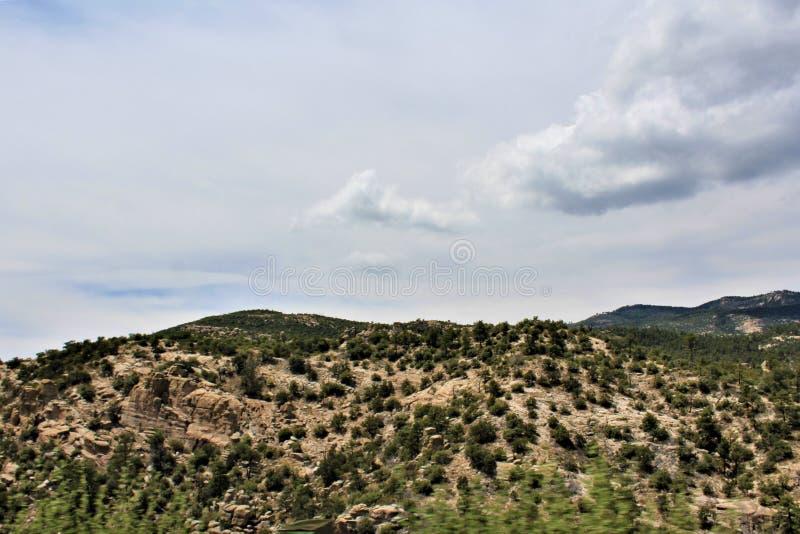 Держатель Lemmon, горы Санта Каталины, национальный лес Coronado, Tucson, Аризона, Соединенные Штаты стоковое фото rf