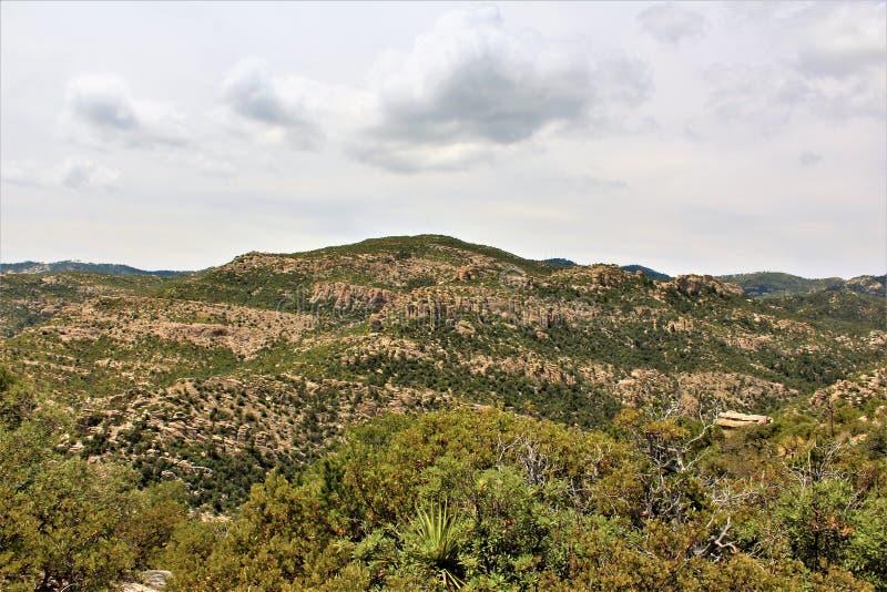 Держатель Lemmon, горы Санта Каталины, национальный лес Coronado, Tucson, Аризона, Соединенные Штаты стоковые фото