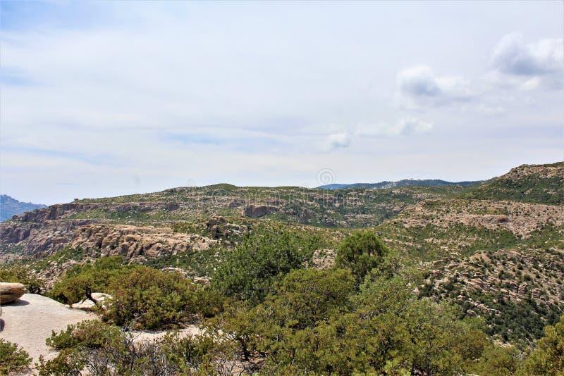 Держатель Lemmon, горы Санта Каталины, национальный лес Coronado, Tucson, Аризона, Соединенные Штаты стоковые фотографии rf