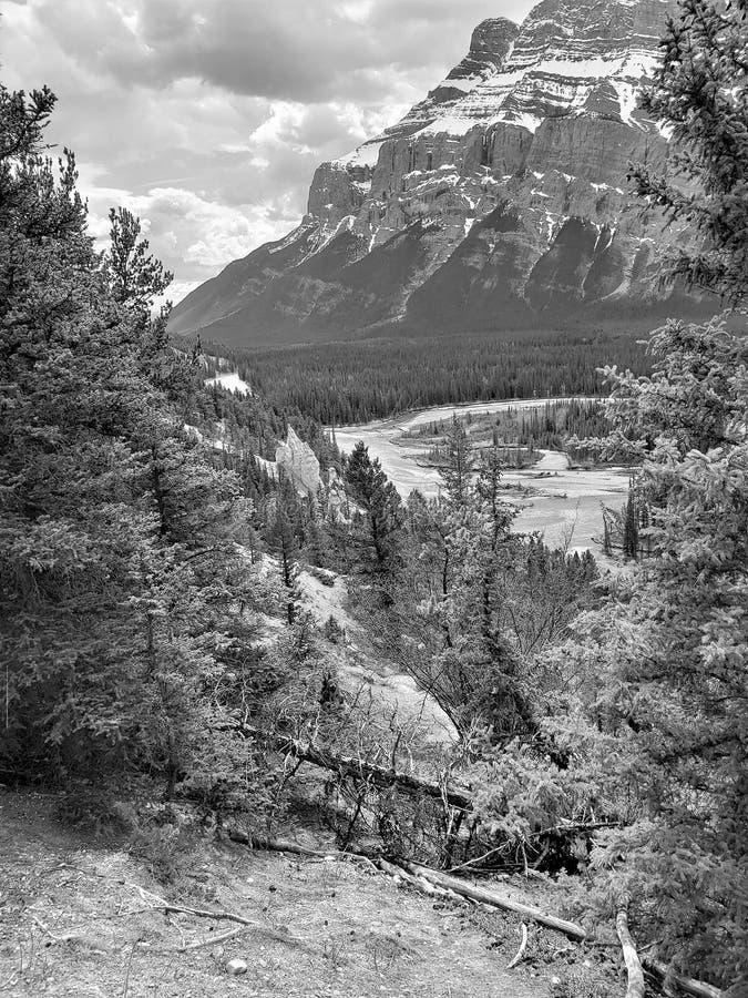 Держатель Rundle Banff Albertas, черно-белое стоковое фото rf