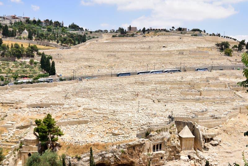 Держатели оливок в Иерусалиме стоковая фотография rf