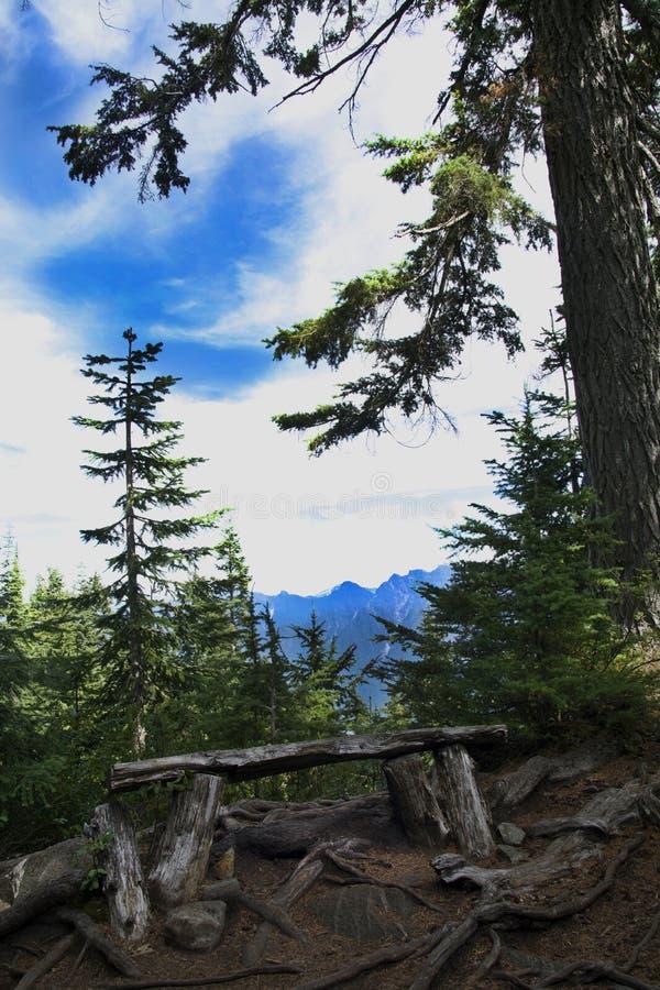 Держатель Seymour пункта бдительности восходящий, Британская Колумбия взбираясь к первому пиковому саммиту с горизонтом долины го стоковые фото