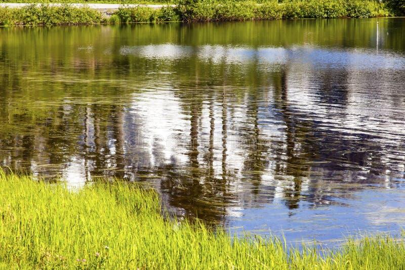 Держатель Shuksan Вашингтон США конспекта озера изображени стоковая фотография