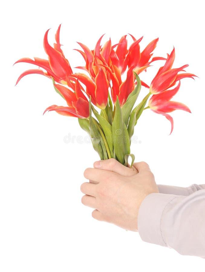 держать рук цветков стоковые фото