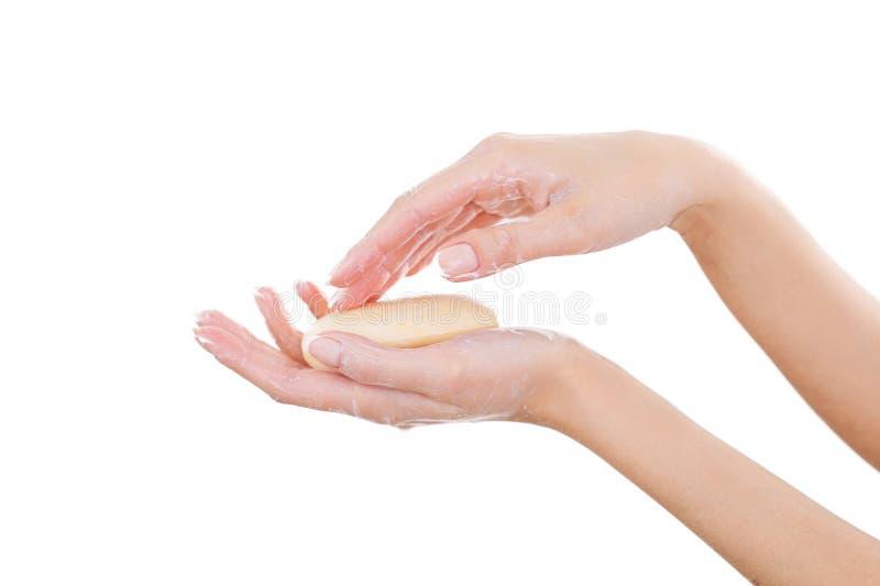 Держащ ее руки очищают и свежий. стоковая фотография