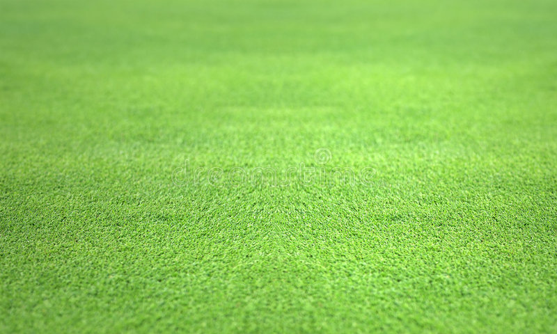 дерновина зеленой лужайки гольфа совершенная стоковая фотография