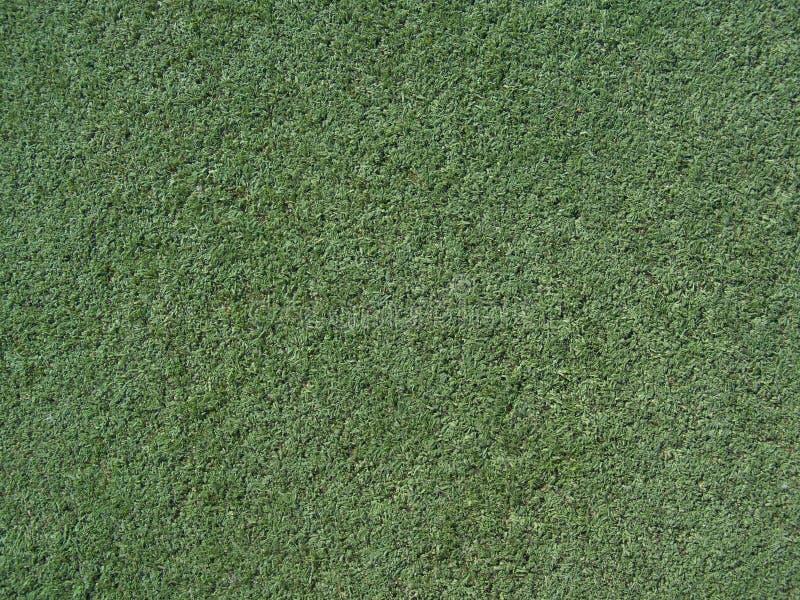 Download дерновина текстуры стоковое фото. изображение насчитывающей поле - 6868426