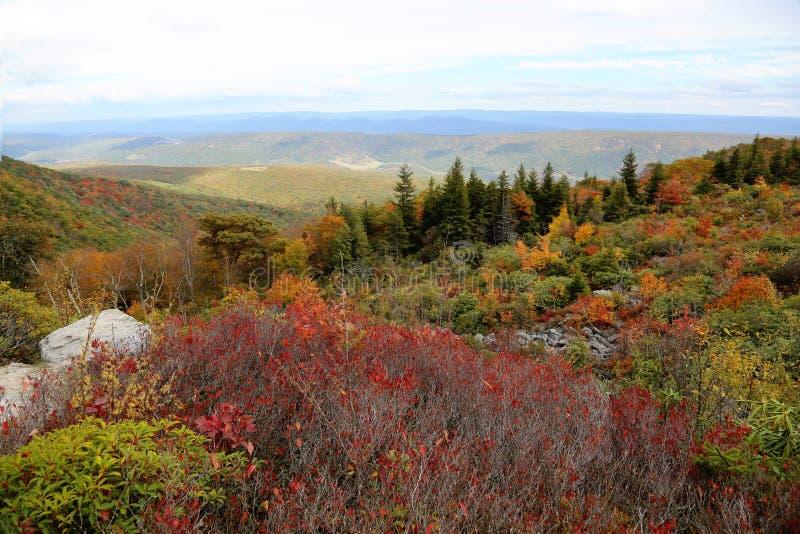 Дерны Западная Вирджиния тележки стоковое изображение rf