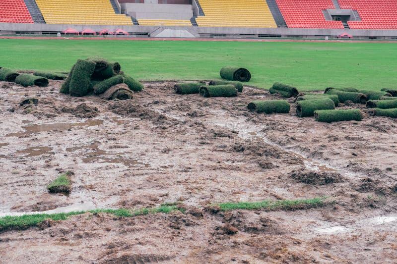 Дерн травы лужайки крена зеленый для класть на футбольное поле футбола стоковое фото rf