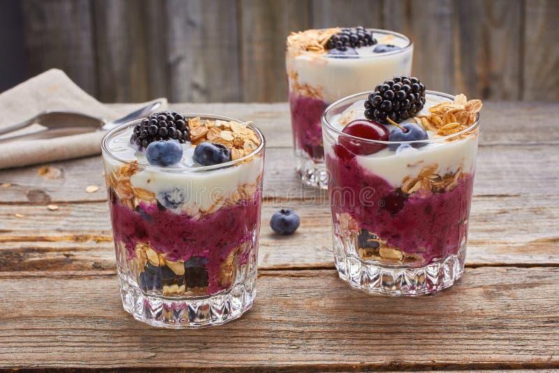 Десерты югурта дерева с ягодами и muesli стоковые фотографии rf