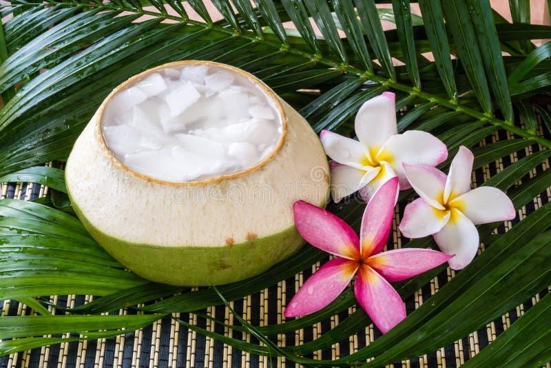 Десерт азиата студня кокоса стоковые фотографии rf