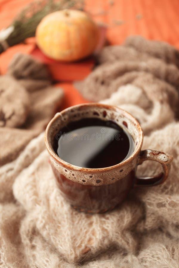 Детали натюрморта живущей комнаты Чашка чаю на шерстяном одеяле в кровати Концепция выходных зимы падения осени Дом падения стоковая фотография rf