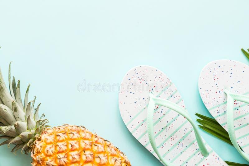 Детали перемещения плоские положенные: свежие ананас, тапочки пляжа и лист ладони лежа на голубой предпосылке установьте текст Вз стоковые изображения rf