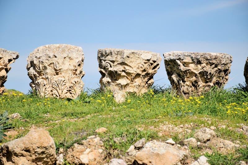 Детали столбцов разрушенного греко-римского города в Иераше, Иордания стоковая фотография rf