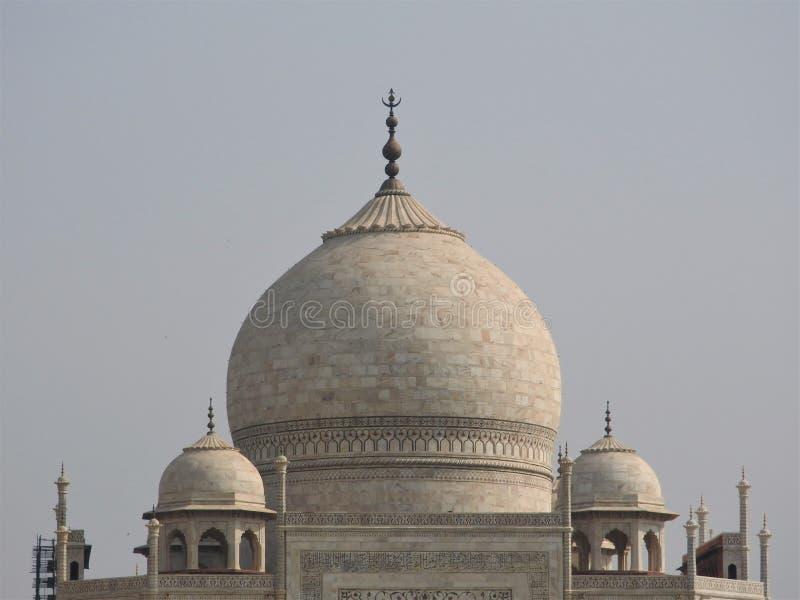 Детали Тадж-Махал конца-вверх, известное место ЮНЕСКО историческое, памятник любов, большая белая мраморная усыпальница в Индии,  стоковая фотография rf
