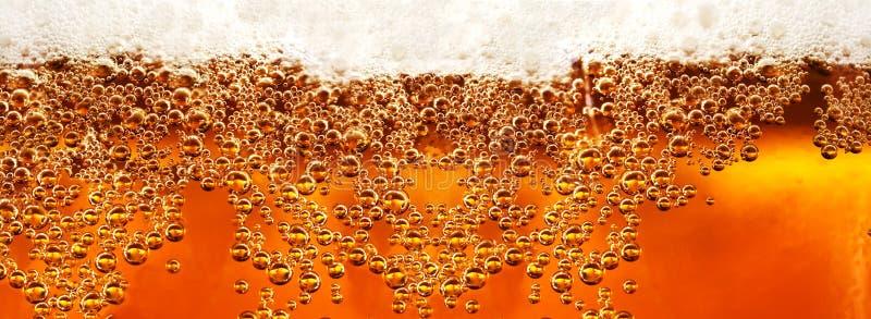 Деталь и напитки пива стоковые фотографии rf
