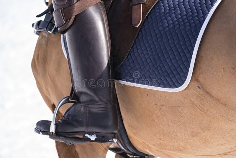 Деталь лошади и седловины стоковая фотография