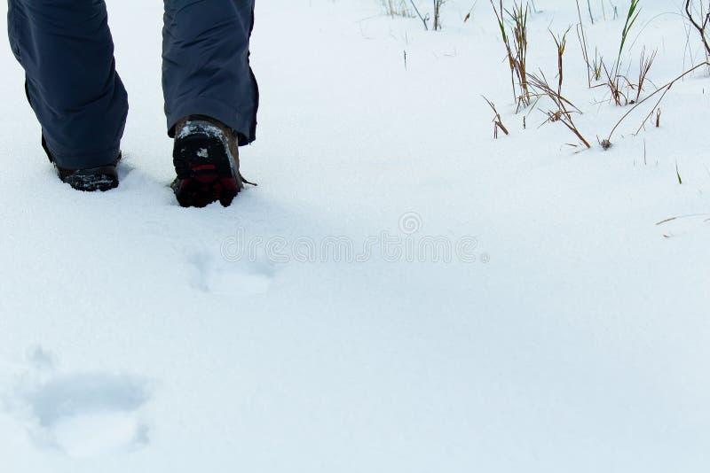 Деталь молодого человека, шаги ботинка hiker в ясный снег стоковые изображения rf