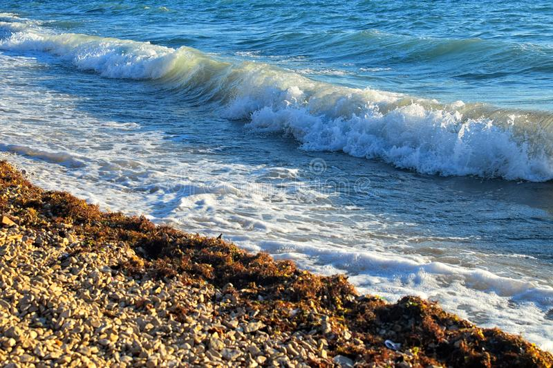 Деталь моря или океанские волны в предпосылке лета или праздника побережья стоковые фото