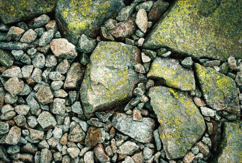 Деталь на дорожке камня горы стоковые изображения rf