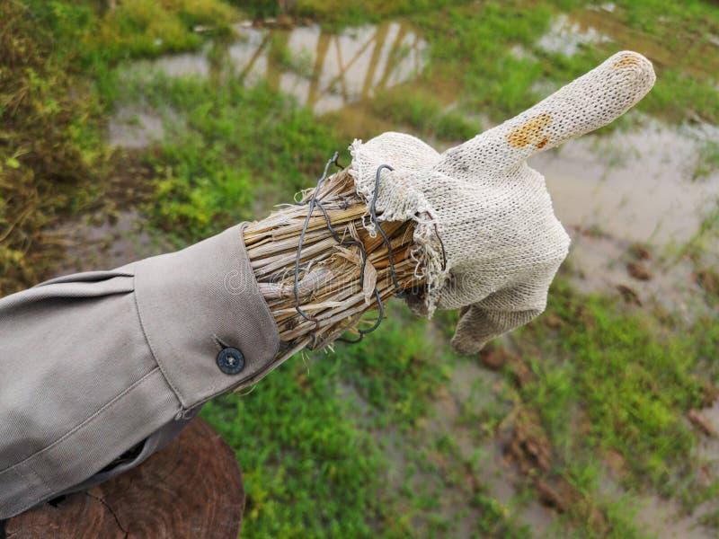 Деталь чучела сельской местности с рукой соломы и одним пальцем указывая вверх стоковое изображение