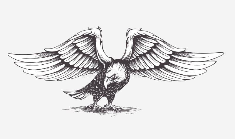 Детальной орел нарисованный рукой вектор бесплатная иллюстрация