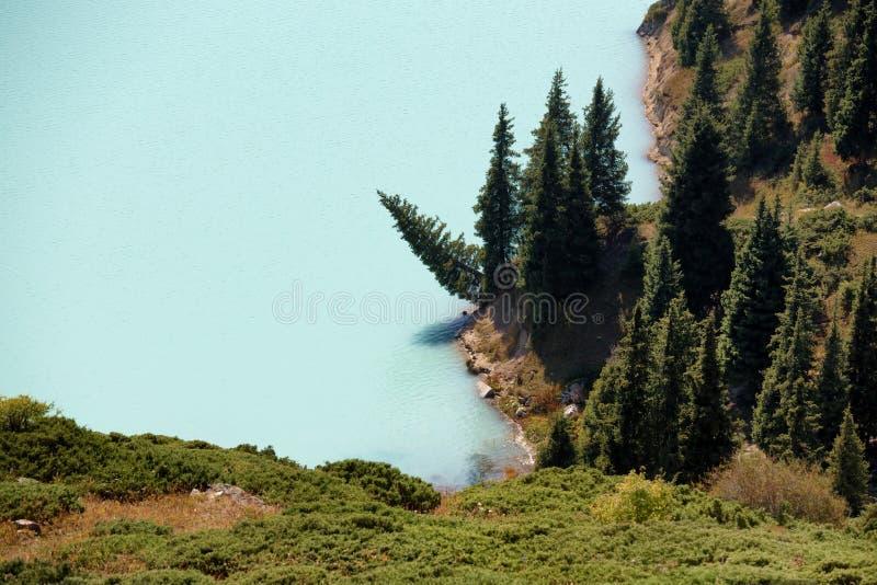 Деталь большого озера Алма-Ата inTien горы Шани стоковые изображения