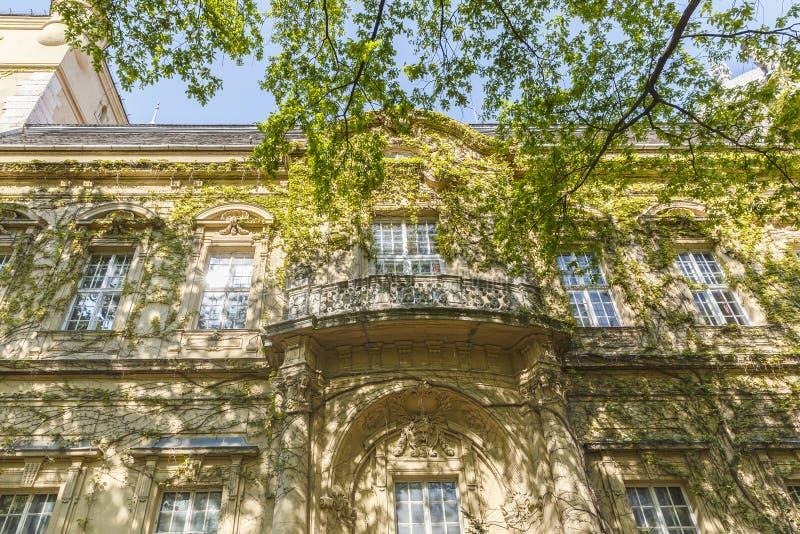 Деталь замка Vajdahunyad в Будапеште стоковые фотографии rf