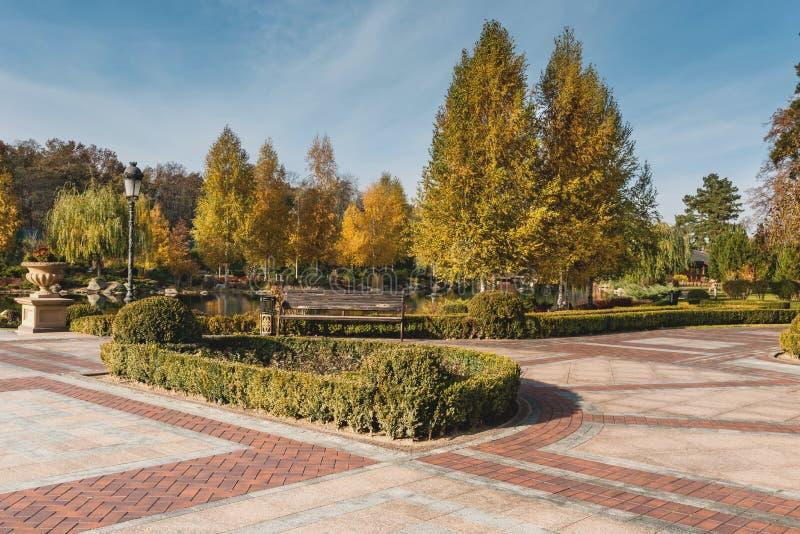 Деталь красивого парка осени стоковое изображение