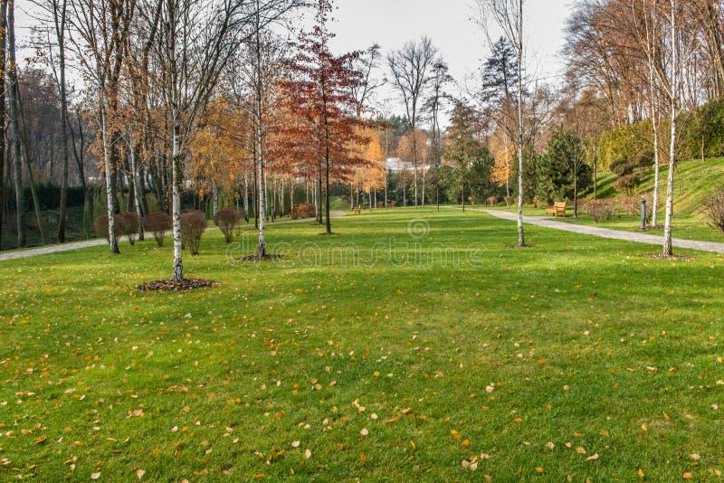 Деталь красивого парка осени стоковое фото