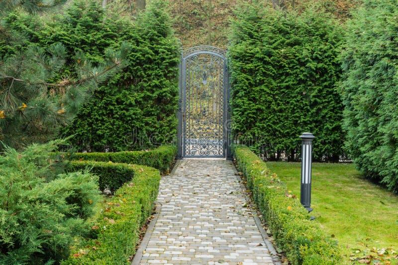 Деталь красивого парка осени стоковое изображение rf