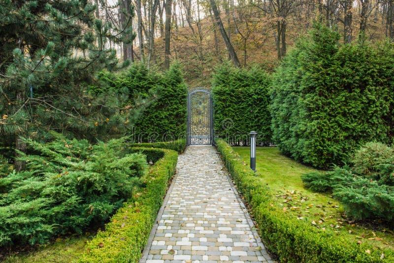 Деталь красивого парка осени стоковое фото rf