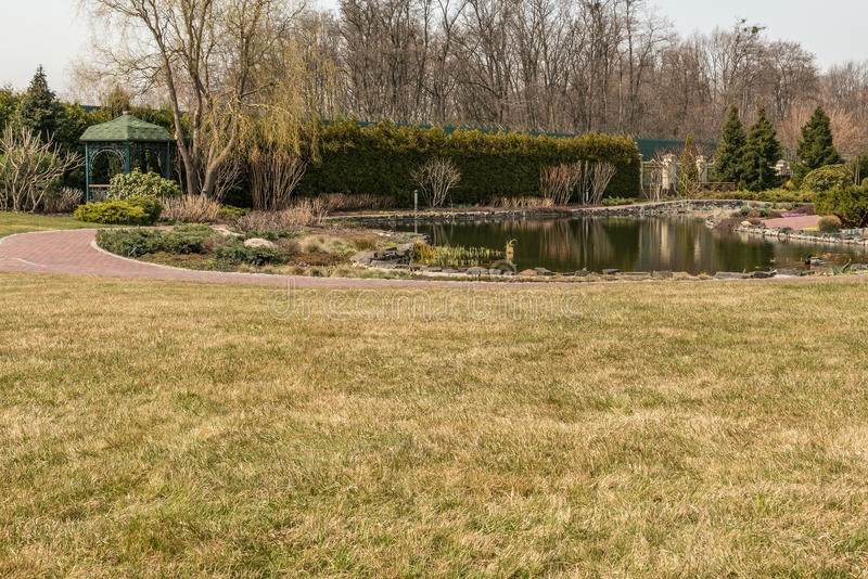 Деталь парка весны стоковая фотография rf