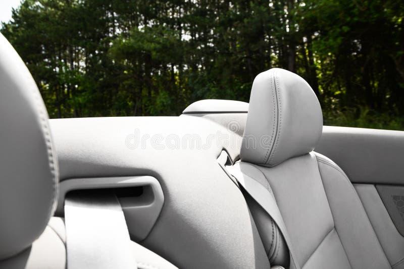 Деталь ремня безопасности на cabriolet или автомобиле спорт стоковые изображения