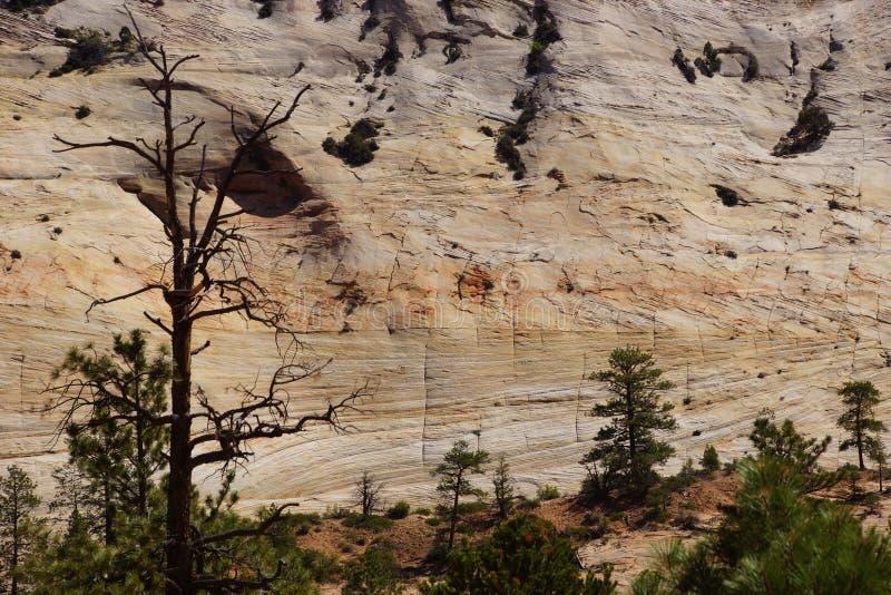 Download Деталь, слои креста настоящие покрашенного песчаника Стоковое Фото - изображение насчитывающей песок, красно: 40589974