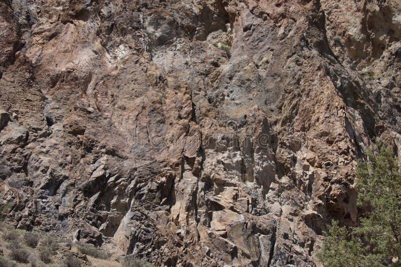 Деталь, тектонический сновать вулканического риолита трясет стоковые фотографии rf