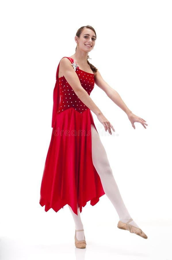 детеныши балерины стоковые изображения rf