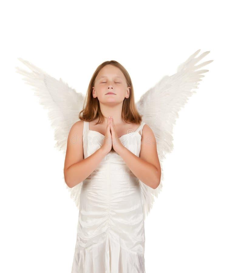 детеныши девушки ангела моля белые стоковые изображения