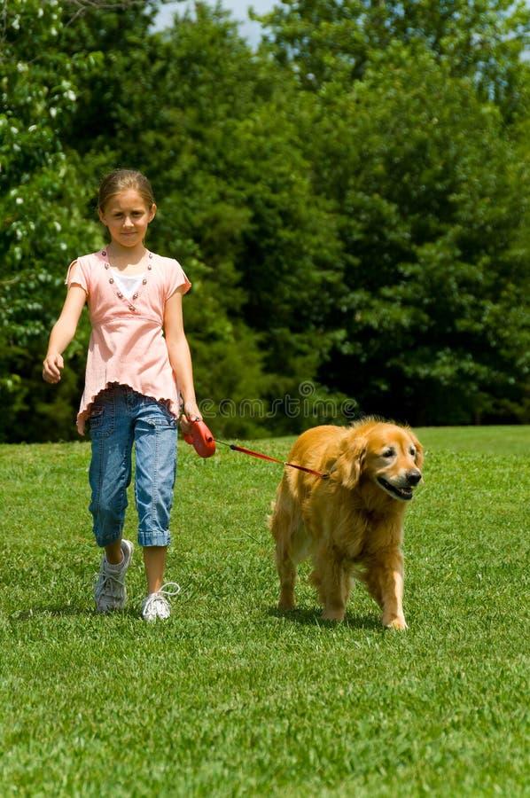 детеныши девушки собаки стоковое фото rf
