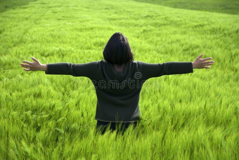 детеныши женщины пшеницы весны поля свободные счастливые стоковое фото