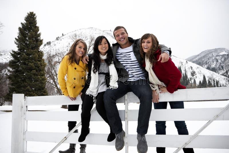 детеныши зимы взрослых привлекательные стоковые фотографии rf