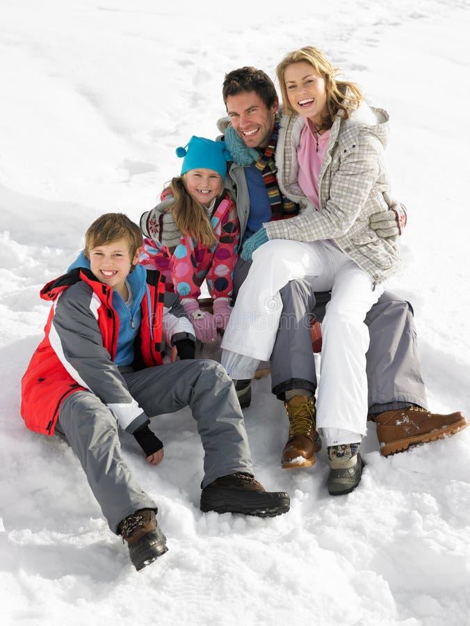 детеныши зимы каникулы семьи стоковые фото