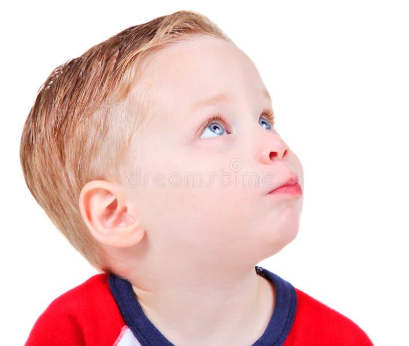 детеныши мальчика красивые стоковые изображения rf