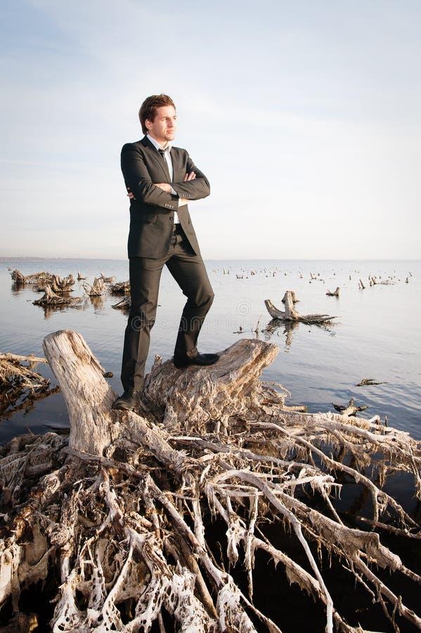 Download детеныши портрета бизнесмена Стоковое Изображение - изображение насчитывающей будущее, изображение: 18394373