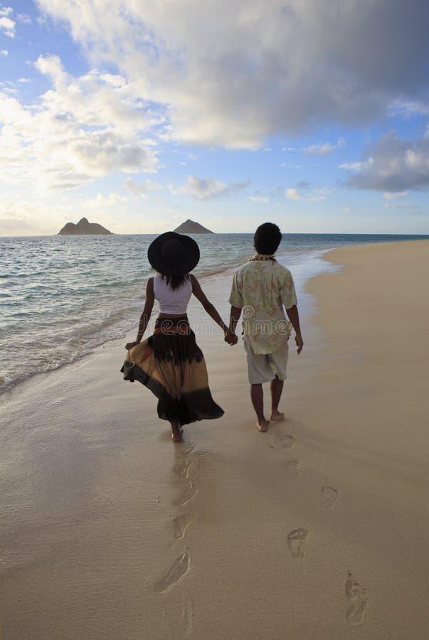 детеныши прогулки пляжа смешанные парами стоковое изображение rf