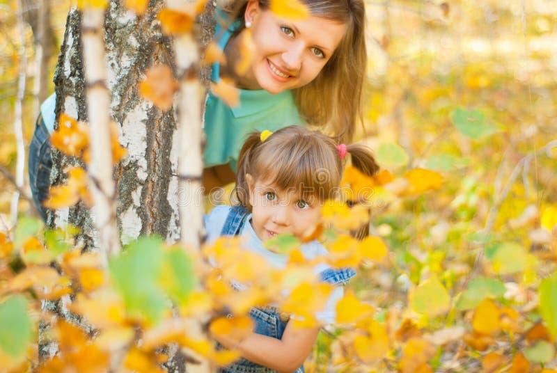 детеныши пущи семьи осени стоковое фото rf